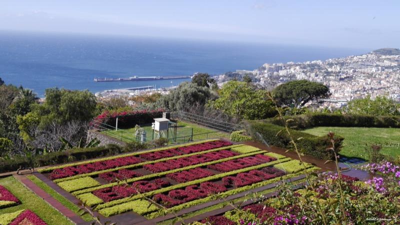 jardin botanique-Funchal-Madère-Balades et Patrimoine