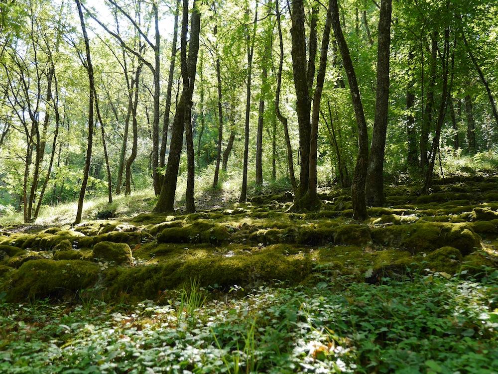 Jardin immaginaires, sorties insolites, Dordogne