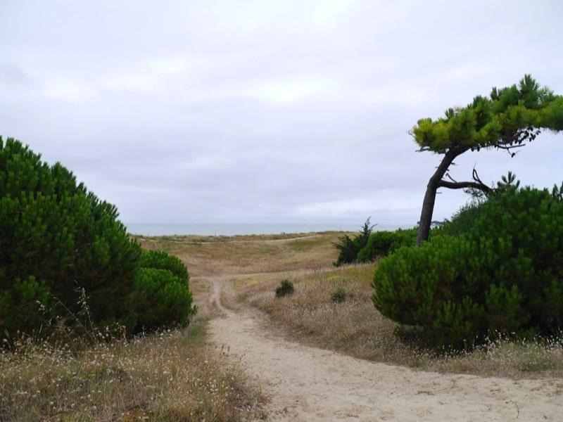 Calendrier Des Marees Noirmoutier.L Ile De Noirmoutier Balades Et Patrimoine