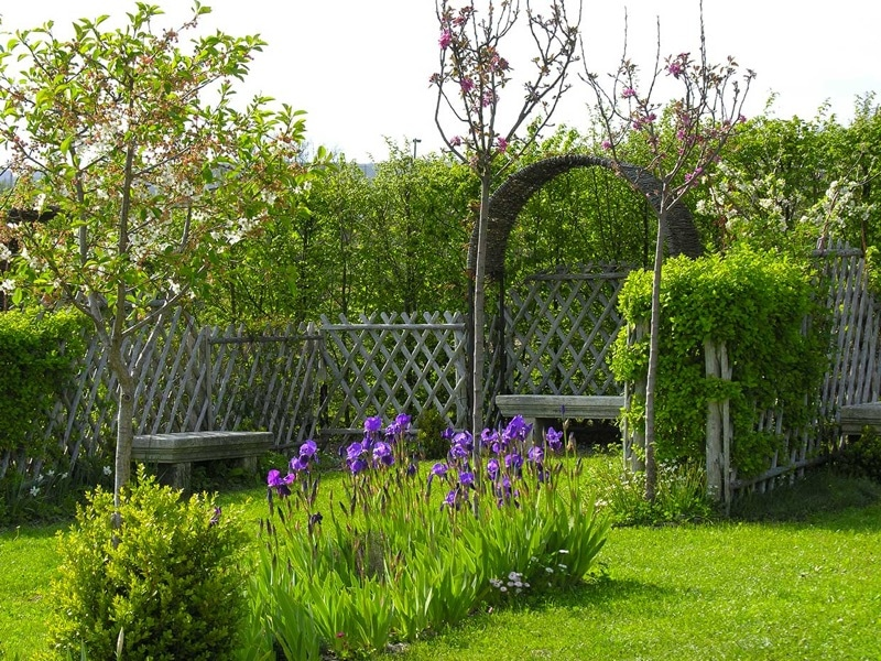 jardin-noria-Prieuré-Salagon