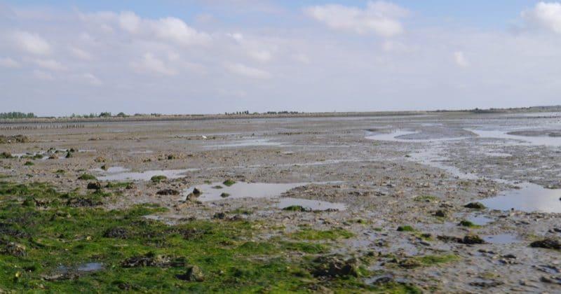 Le Gois-Vendée