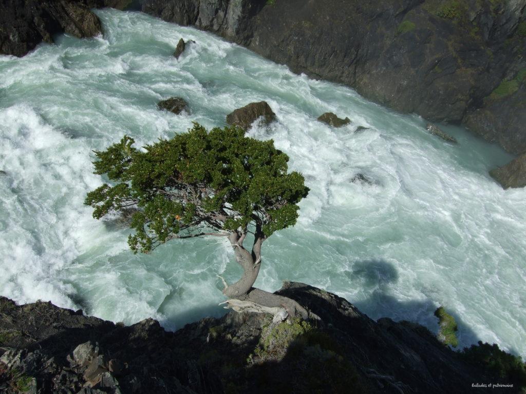 torres del paine-patagonie-chili-salto grande