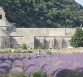 visite Vaucluse